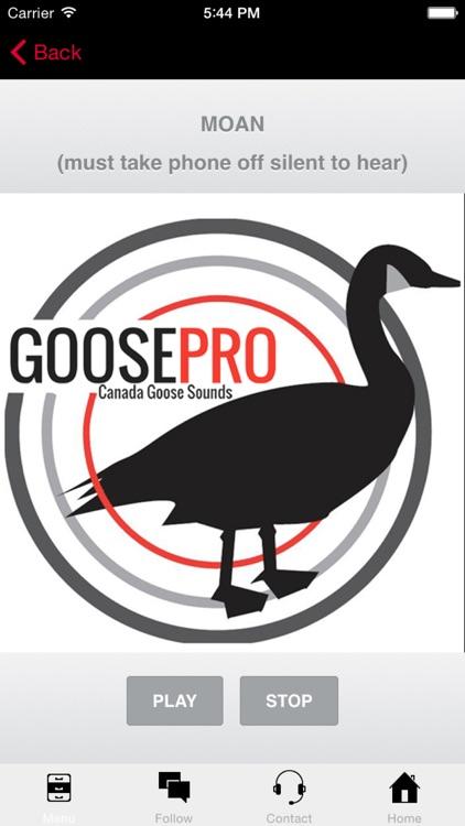 Goose Hunting Calls-Goose Sounds-Goose Call App screenshot-3