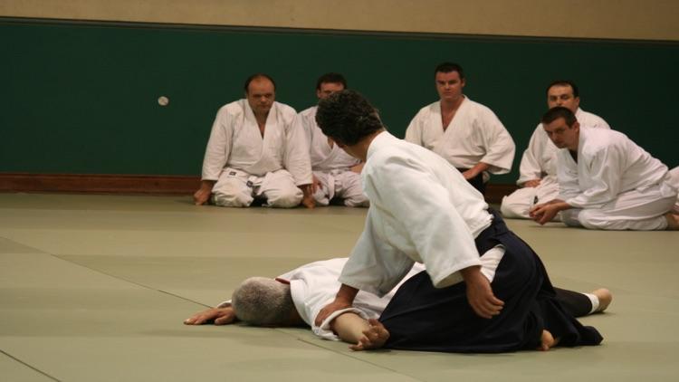 Aikido 2016 screenshot-4