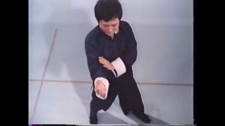 Teach Yourself Wing Chun screenshot-3