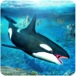 Killer Whale Simulator 3D – An Orca simulation game