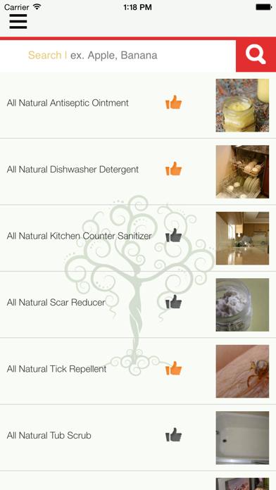 Natural Goddess DIY Homemade Green Beauty, Home, Cleaning, Body, Hair, Skin, Health & Pets Recipes screenshot one