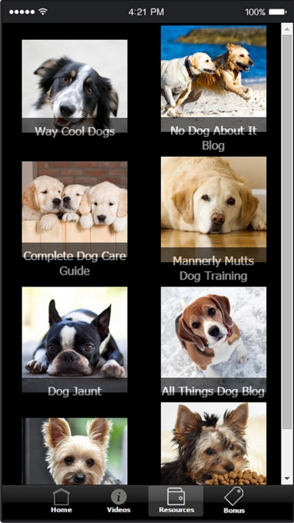 Dog Training Tips - Tips and Tricks For Training Your Dog screenshot-3
