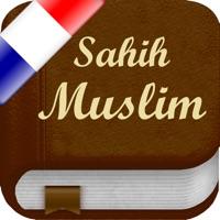 Codes for Sahih Muslim en Français (Lite) - +1700 Hadiths - صحيح مسلم Hack