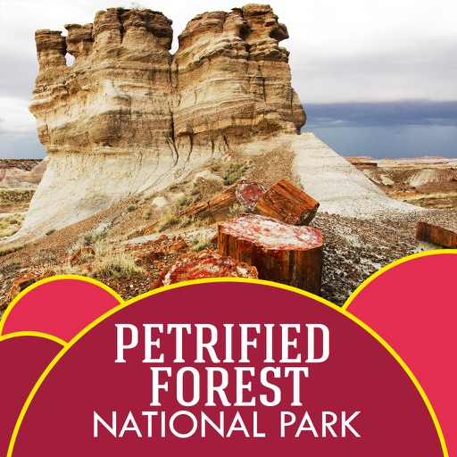 Petrified Forest National Park Travel Guide