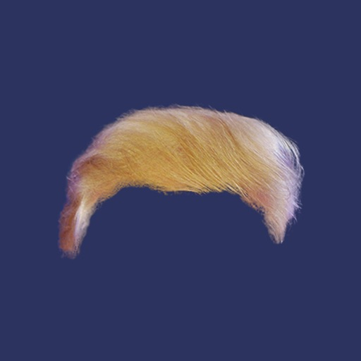 TRUMP HAIR icon