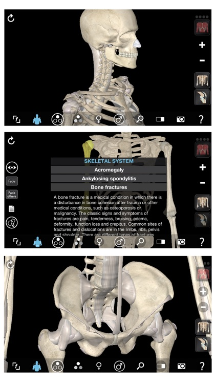 3D Organon Anatomy - Skeleton, Bones, and Ligaments screenshot-0