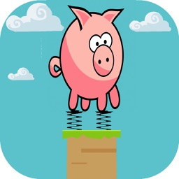 The Bouncing Pig