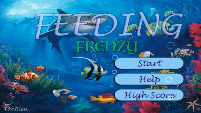 feeding grow fish