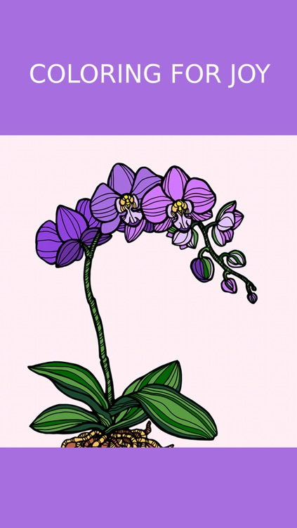 Floral Coloring Book For Adults: Best Free Adult Coloring Therapy Pages - Anxiety Stress Relief Balance Relaxation