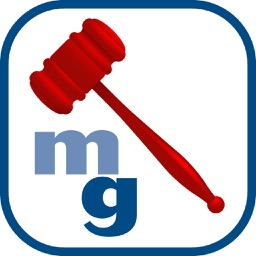 Magic Gavel® Basic