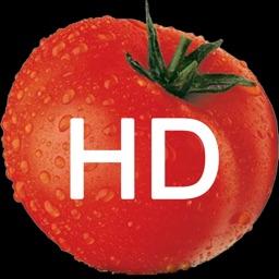 Ketchup HD