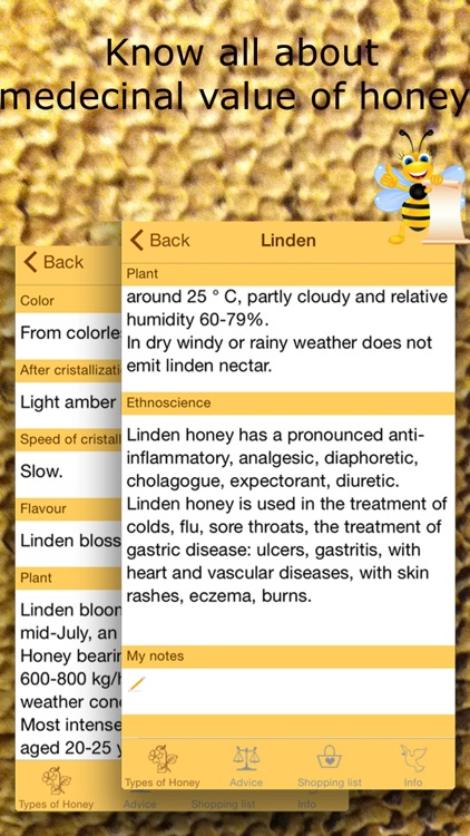 Honey Guide. All about bees and honey types.