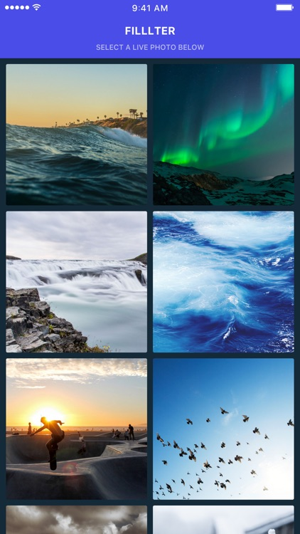 Filllter - Filters & Effect for Live Photos screenshot-0