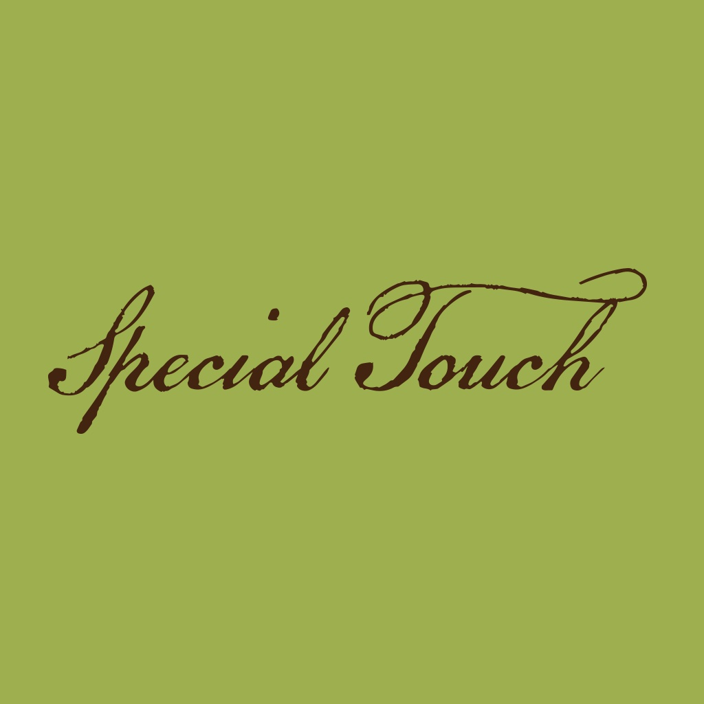 Special Touch Massage & Spa