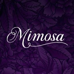 Liberty's Mimosa