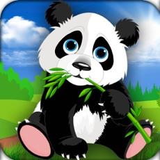 Activities of Crazy Panda Fun Challenge 2016