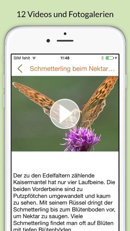 Insekten & Schmetterlinge bestimmen – entdecken Sie die 100 wichtigsten Arten in der Natur und im eigenen Garten screenshot-3