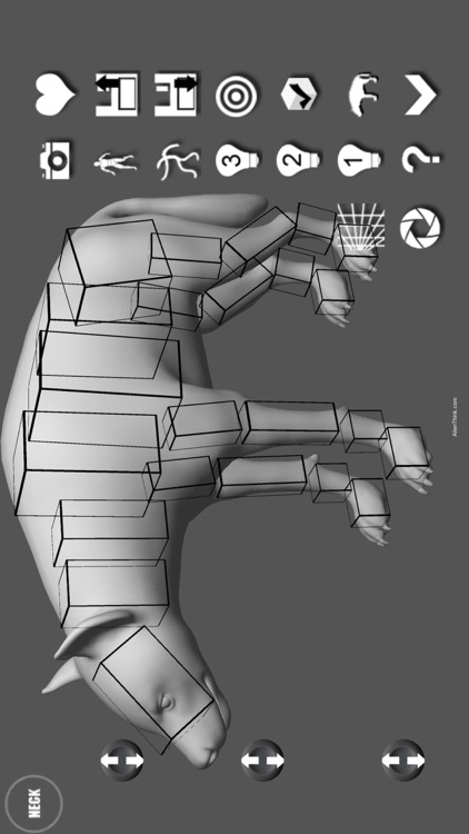 Hyena Pose Tool 3D