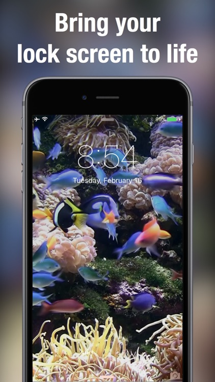 Live Wallpapers for Lock Screen: Animated backgrounds & themes for iPhone