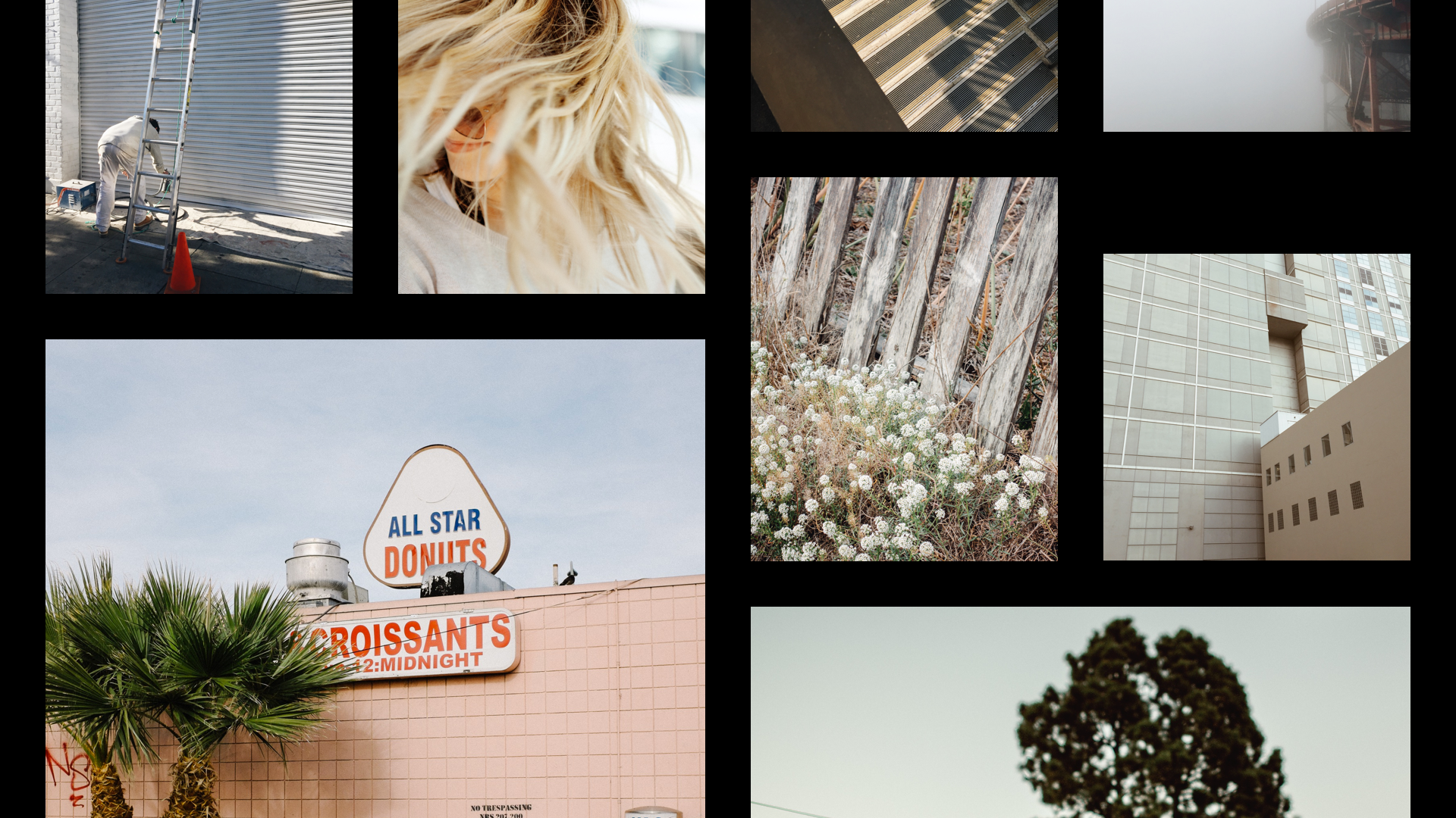VSCO: Photo & Video Editor screenshot 12