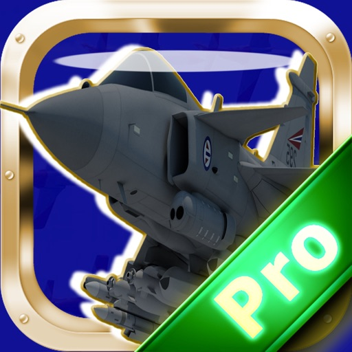 Combat Flight Air Wing Pro