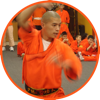 Shaolin Kung Fu - Anthony Walsh