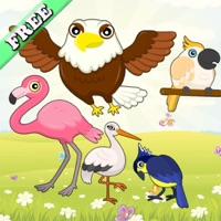 Codes for Flying Birds Match Games for Toddlers and Kids : discover the bird species ! FREE app Hack