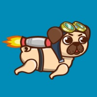 Codes for Rocket Pug Hack