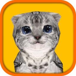 Cat Simulator HD