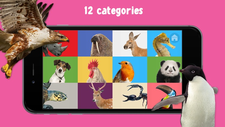 100 Animals Words for Babies & Toddlers School Edition screenshot-3