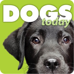 Dogs Today Magazine