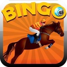Activities of Bingo Horse Way Game