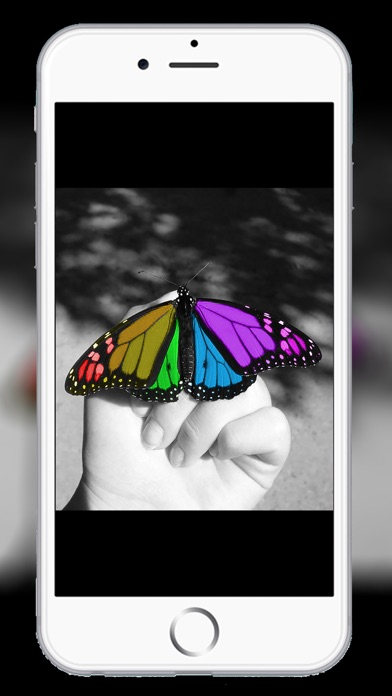 Pro Color Camera Photo Editor - New Background Colour Touch with Picture Splash Effect Screenshot on iOS