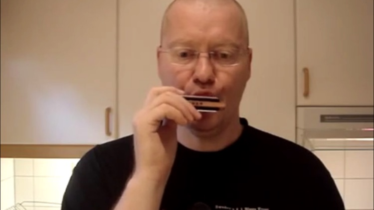 Learn Harmonica screenshot-3