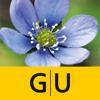 Blumen bestimmen – entdecken Sie, welche Pflanzen und Blüten Sie in Natur und Garten umgeben