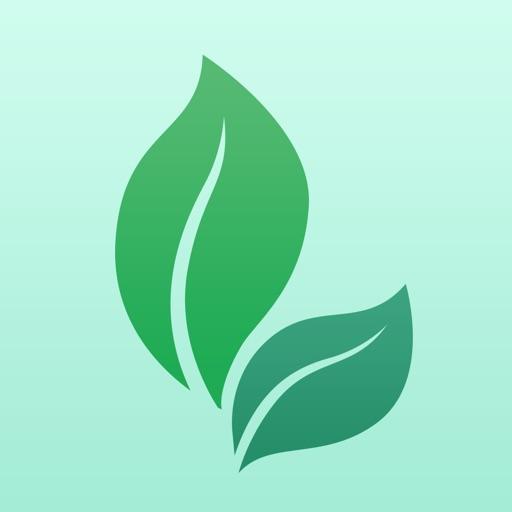 健康养生-门诊挂号平安,快速问医生,春雨,丁香,医生,过日子,每日知识助手 iOS App