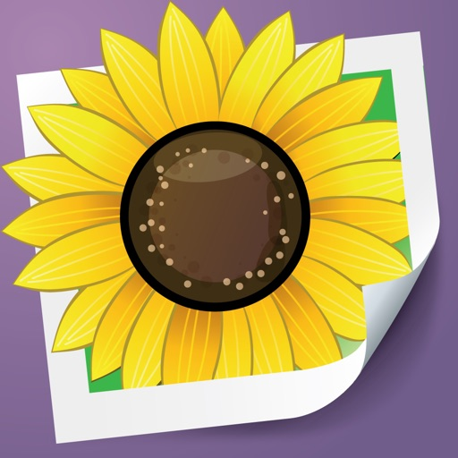 Photo Adjust Pro - enhance and retouch your dark pictures app logo
