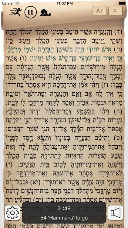 Megilat Esther מגילת אסתר