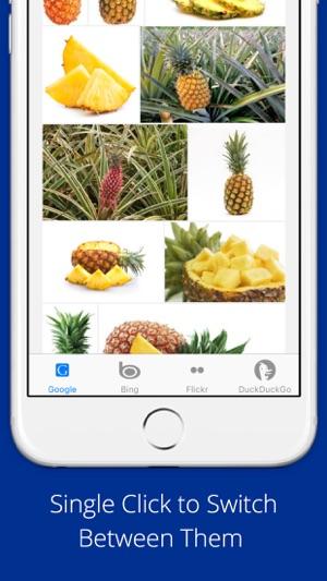Universal Image Search Pro Screenshot