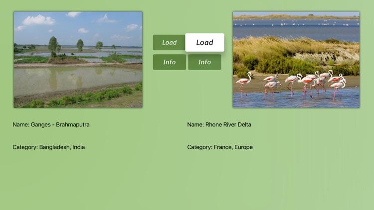 River Deltas Kit
