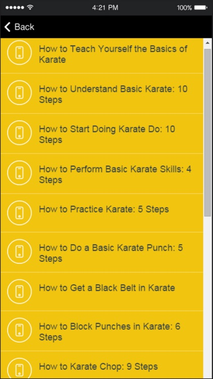Karate Techniques - Learn Basic Karate Moves Easily