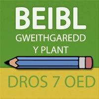 Codes for Beibl Gweithgaredd y Plant i blant dros 7 oed Hack