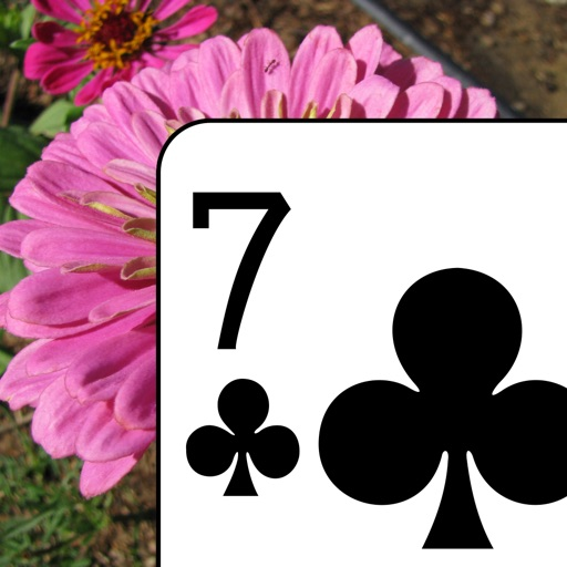 Flower Garden Solitaire - Classic