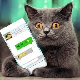 Simulator Virtual Cat Joke