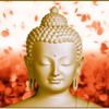 Buddha Mantras For Meditation PRO