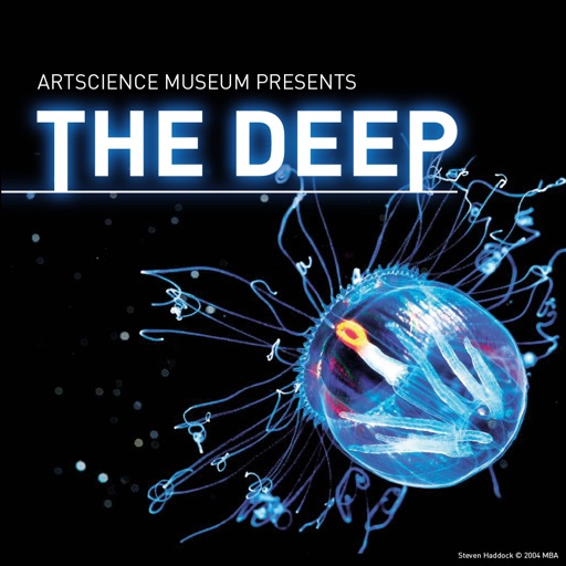 The Deep, ArtScience Museum