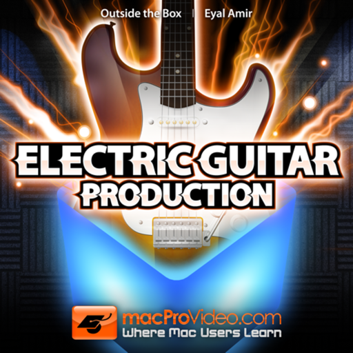 Electric Guitar Production