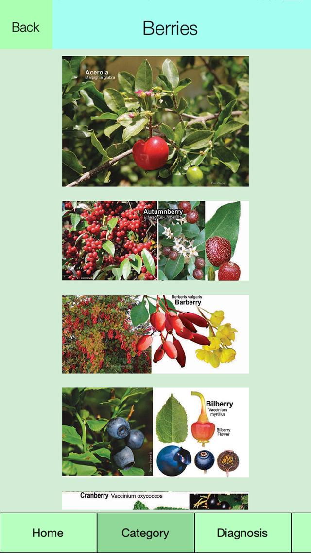 Edible Plant Guideのおすすめ画像2