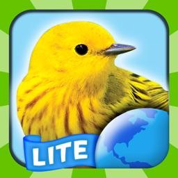 My Bird World HD Lite