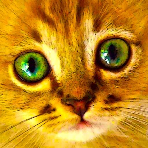 Котята и котики - пазлы для девочек, детские развивающие игры, игрушки, пазл и игра для детей и малышей